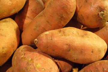 sweet-potato-effie-summers2