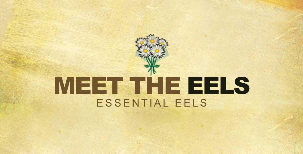 Meet-The-Eels