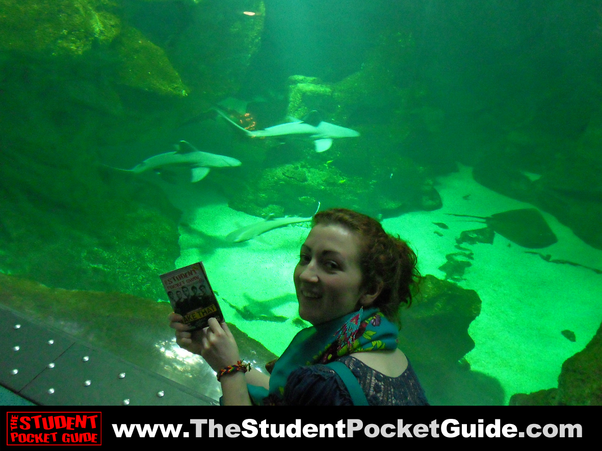 Issue-17-La-Rochelle-Aquarium-France The Student Pocket Guide_SPG on Tour_