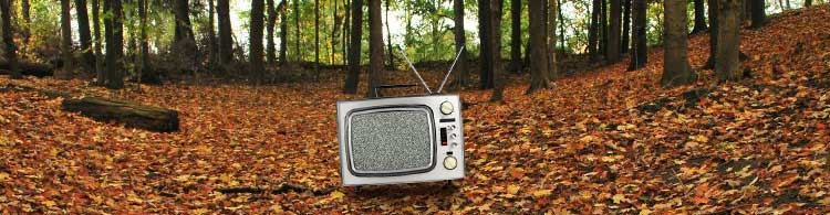 Autmn_TV