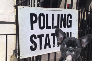 Dogs at the Polling Station