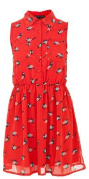 New Look Bird Dress