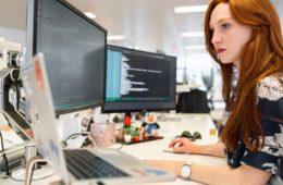 software engineers software engineering