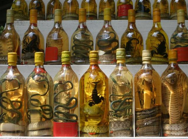 Snake wine_extremely weird meals